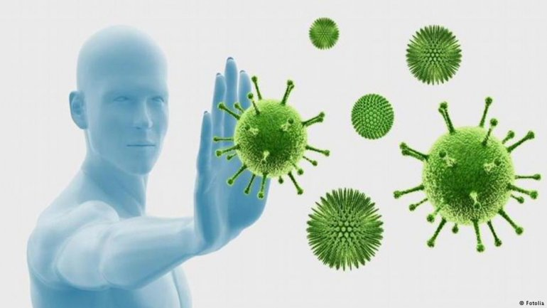 الغدة الصعترية ، والجهاز المناعي ، والغدد ، والتأمل ، والفيروسات