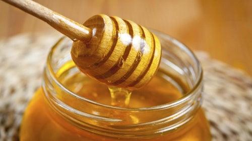 كل ما تحتاج إلى معرفته عن العسل