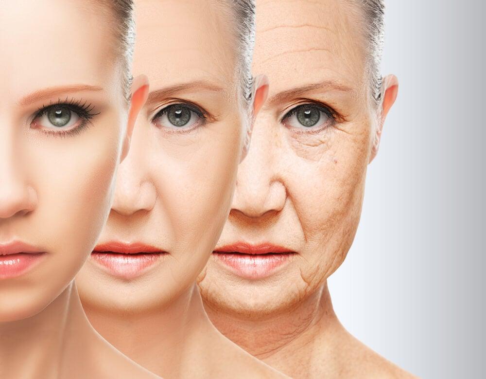 مستويات الشيخوخة