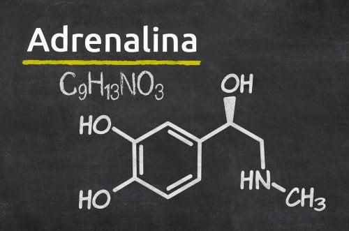 الأدرينالين
