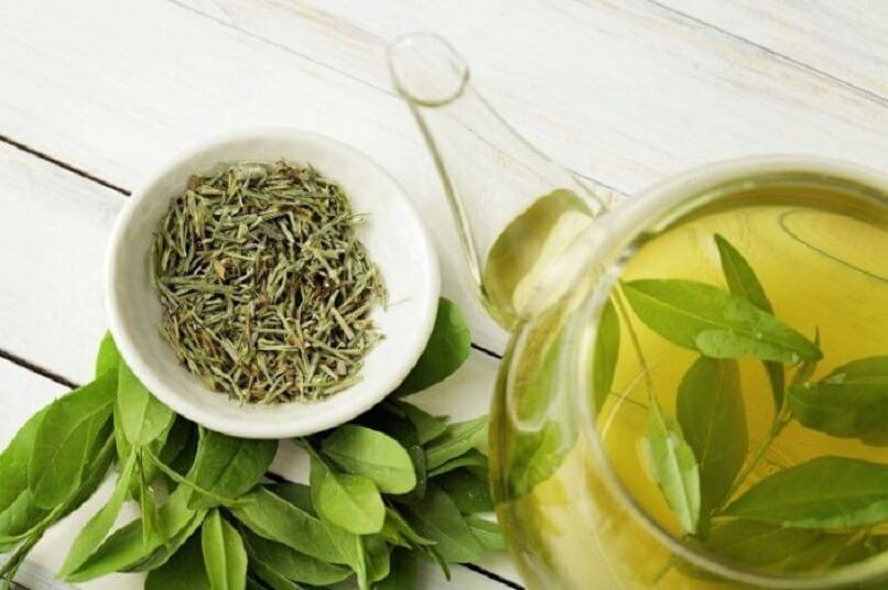تسريب الشاي الأخضر