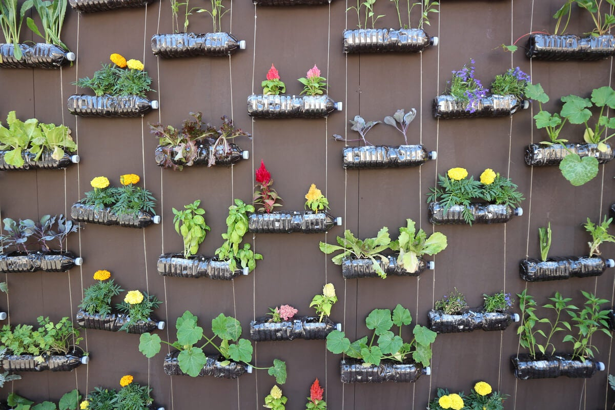 حديقة عمودية للاستفادة من الباحات الصغيرة.