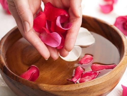 ماء الورد هو أحد أفضل أسرار الفرس.