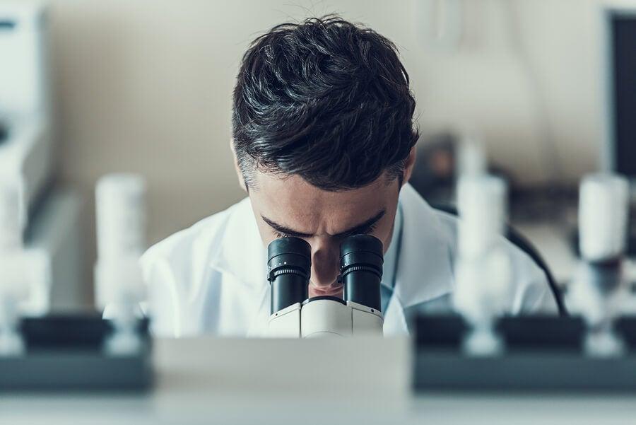اللحوم الاصطناعية التي يتم إنتاجها في المختبر.