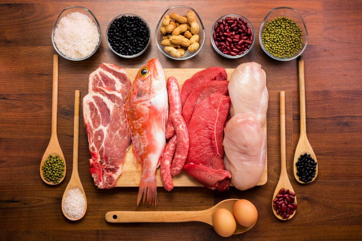 الأطعمة البروتينية.