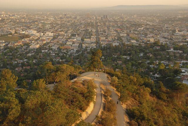 الغابات والأشجار وتغير المناخ والمدن والتحضر