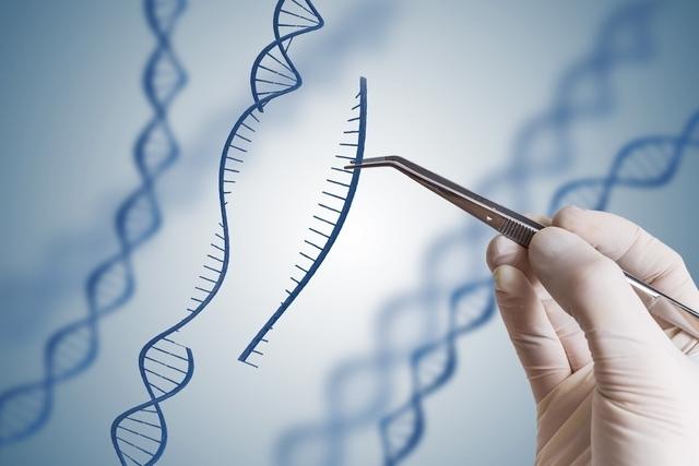 علاج الجينات و علاج السرطان في البرازيل